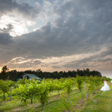Wedding photographer for Becker Farms and Vizcarra Vineyards.